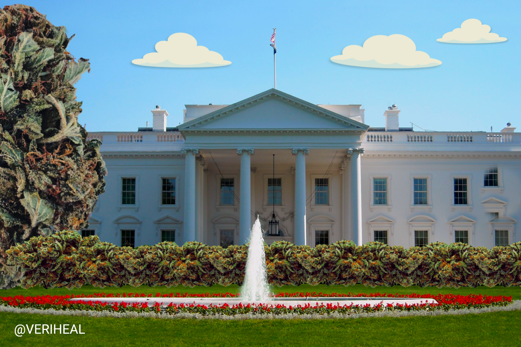 The White House Asks Staff to Resign Over Past Cannabis Use Despite Easing Restrictions