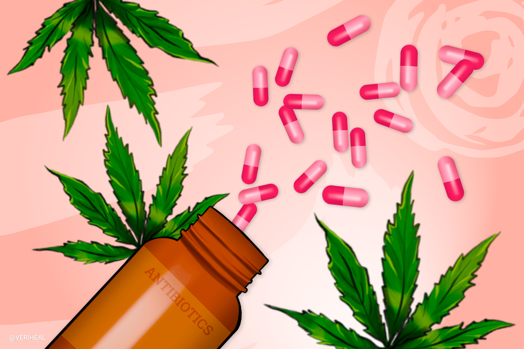 Is it Safe to Consume Cannabis While Taking Antibiotics?