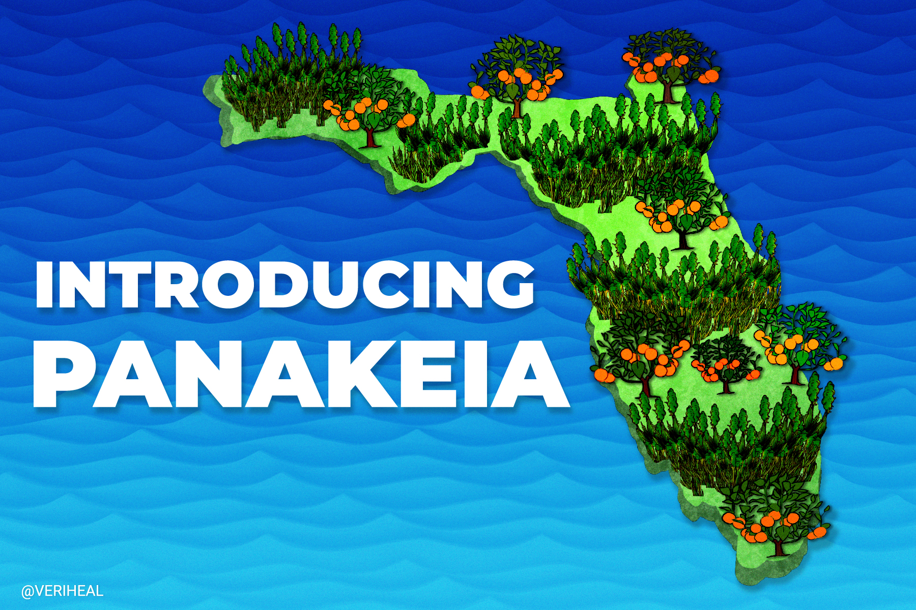 Panakeia: The First THC-Free Cannabis Plant Coming Out of Florida