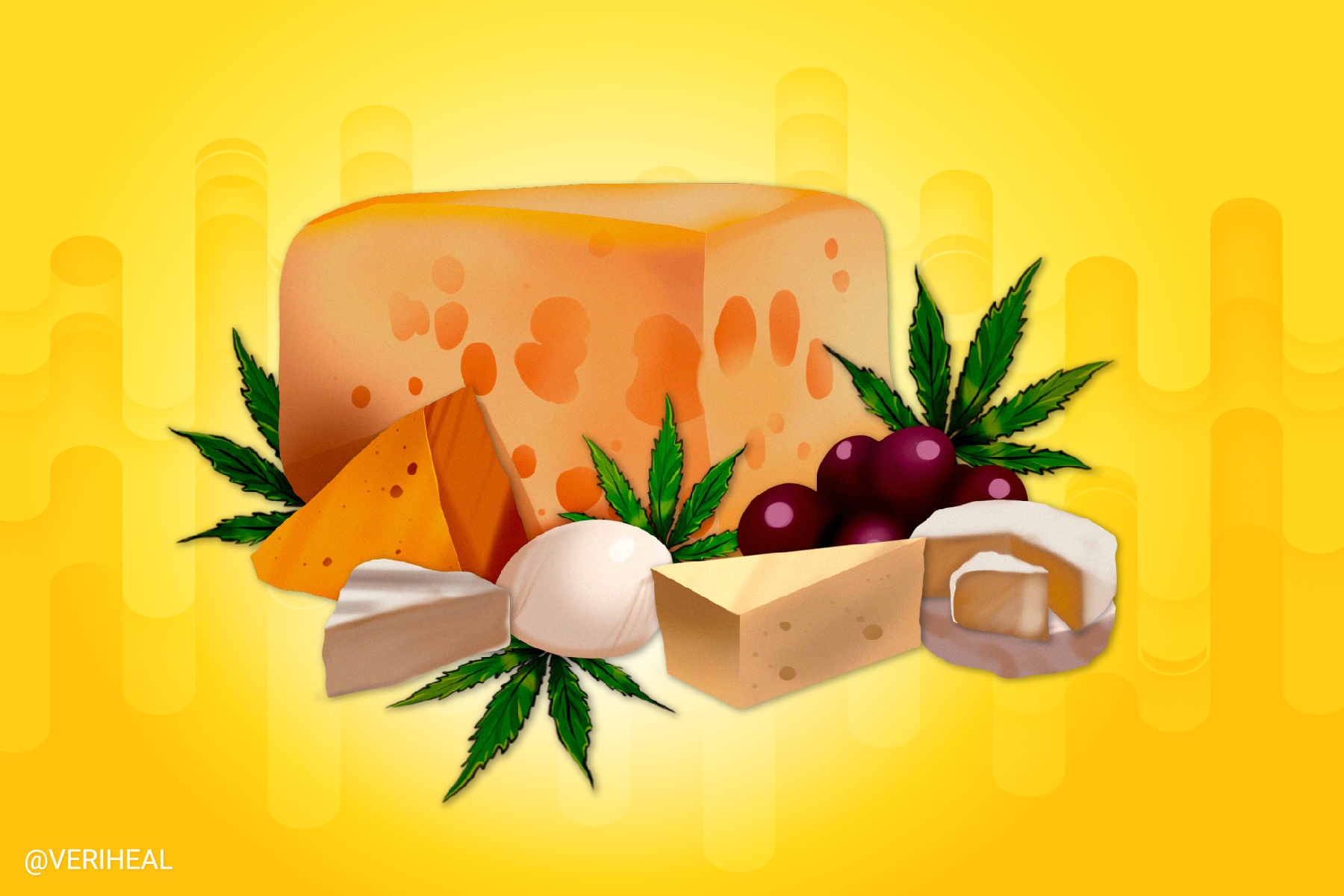 Say Cheese, Please – The Story of the Exodus Cheese Strain