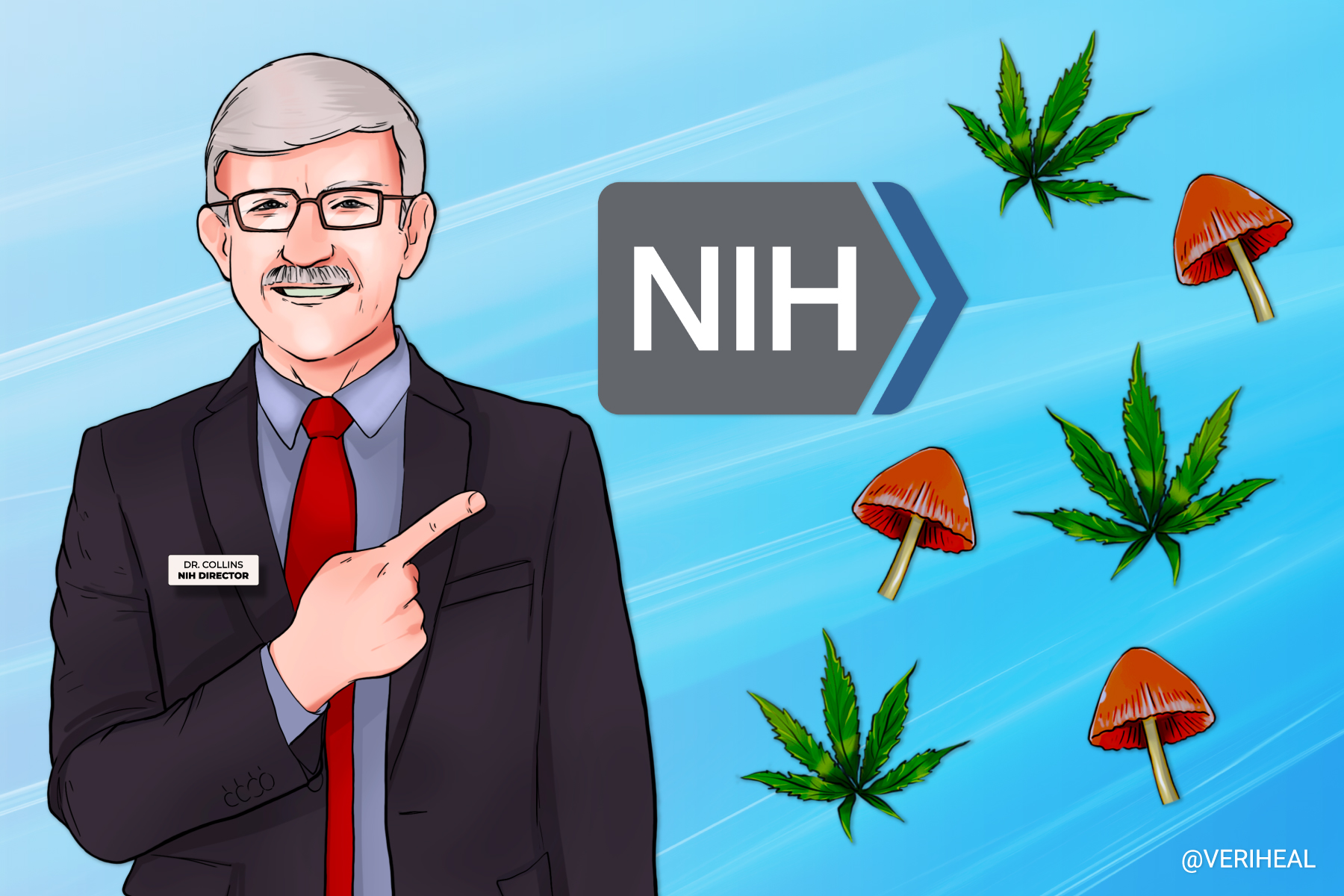 What's Next for the NIH When it Comes to Psychedelics?