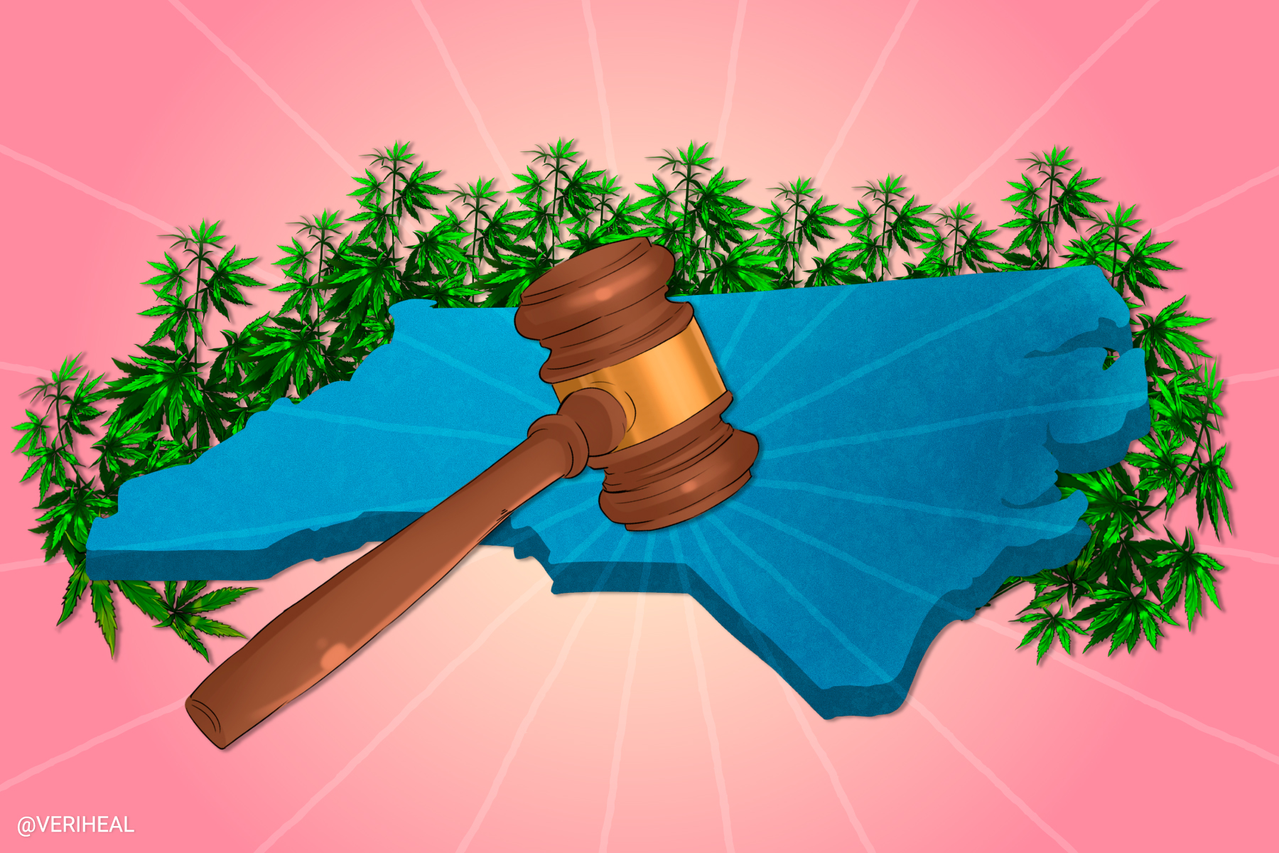 North Carolina Senate Passes Extensive Medical Cannabis Bill