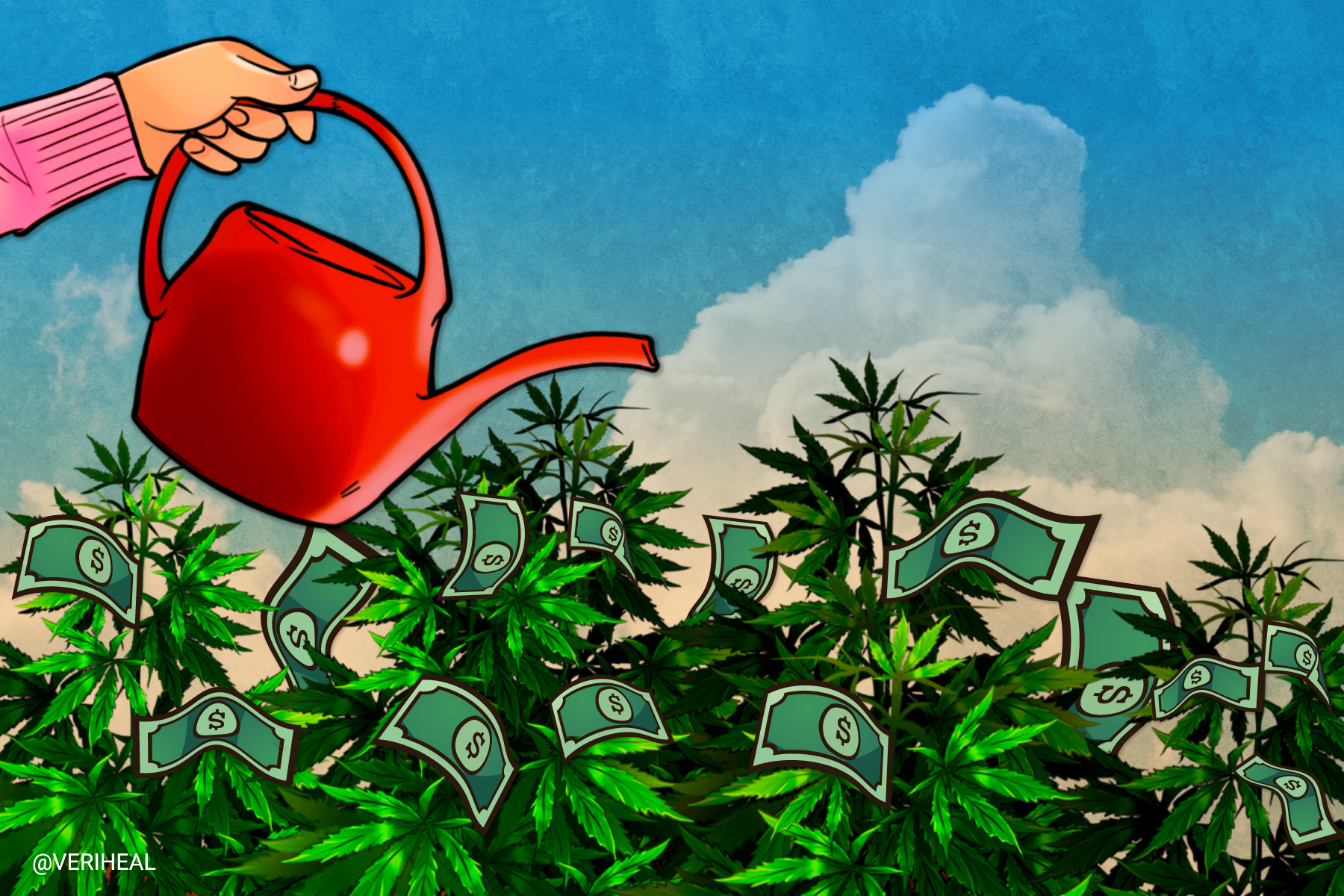 These Top Valuable Cannabis Companies are Worth a TON