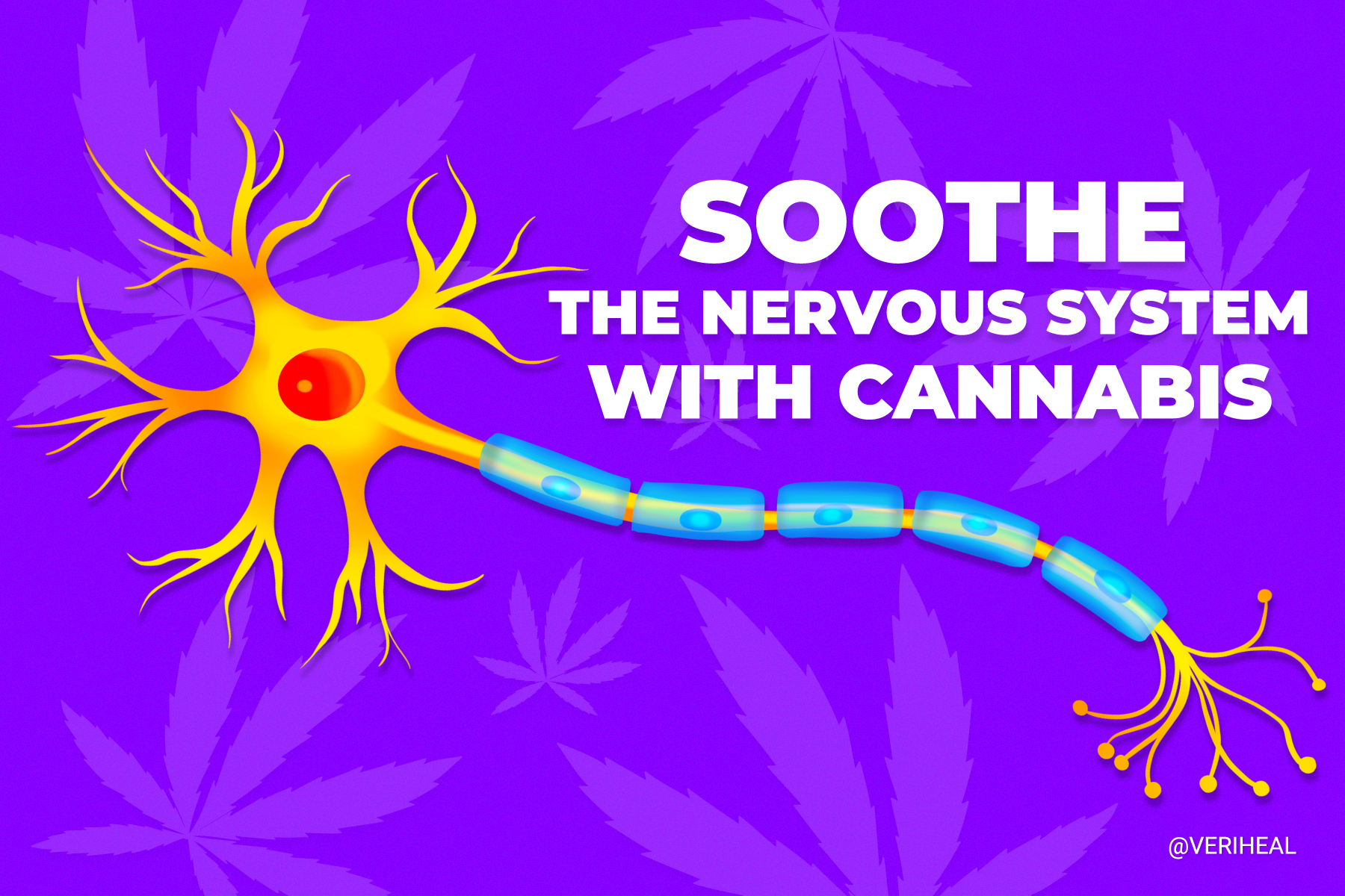 Tips on How to Soothe the Nervous System With Cannabis