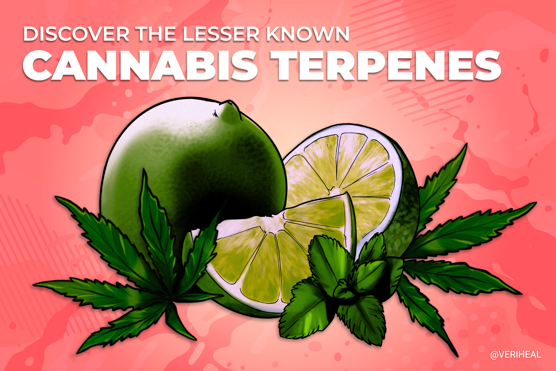 Discover The Lesser Known Cannabis Terpenes No One's Heard Of