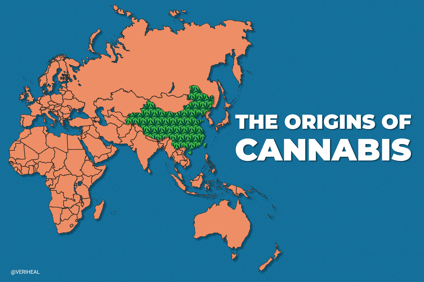 A Study Confirms That the Roots of Cannabis Originate in Northwest China