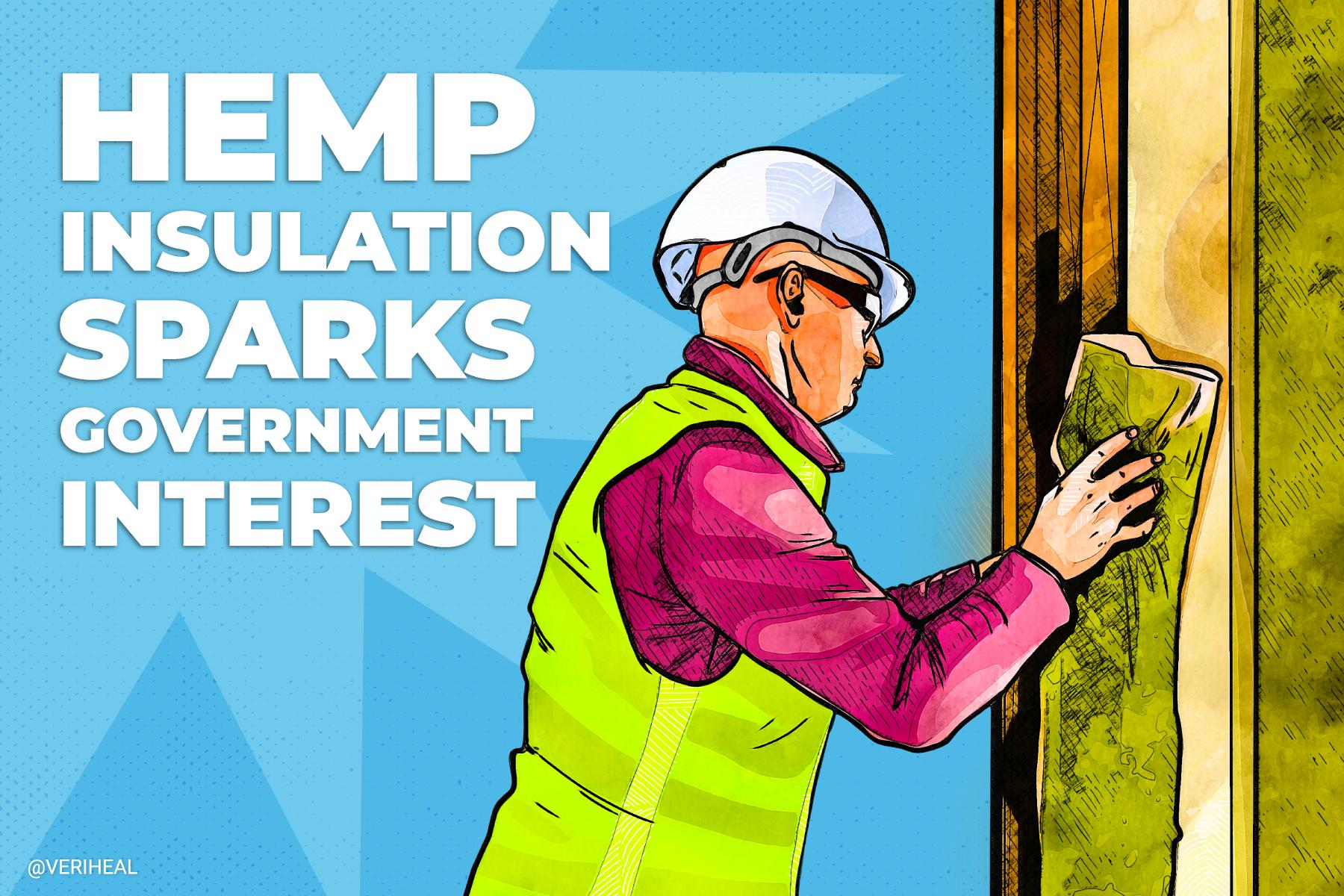 Hemp Insulation Sparks Government Interest