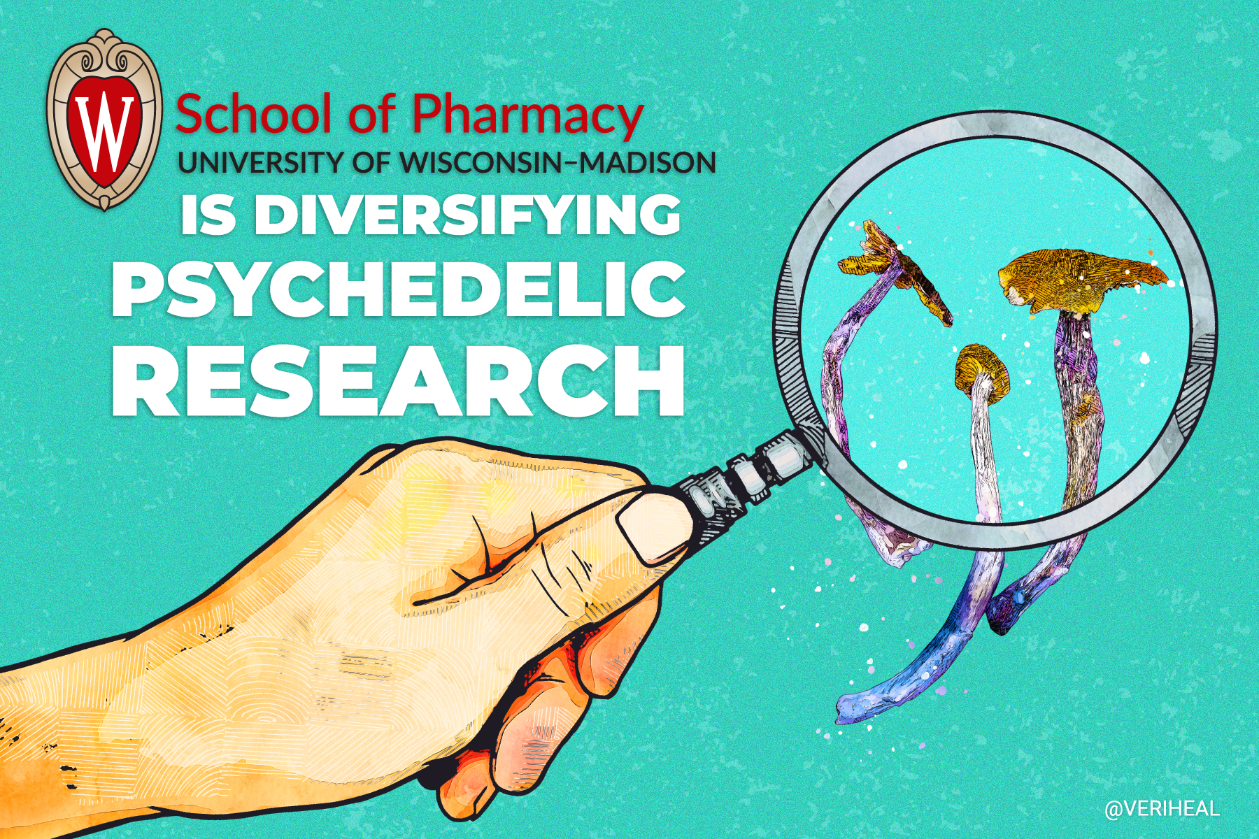 UW-Madison Is Diversifying Psychedelic Research