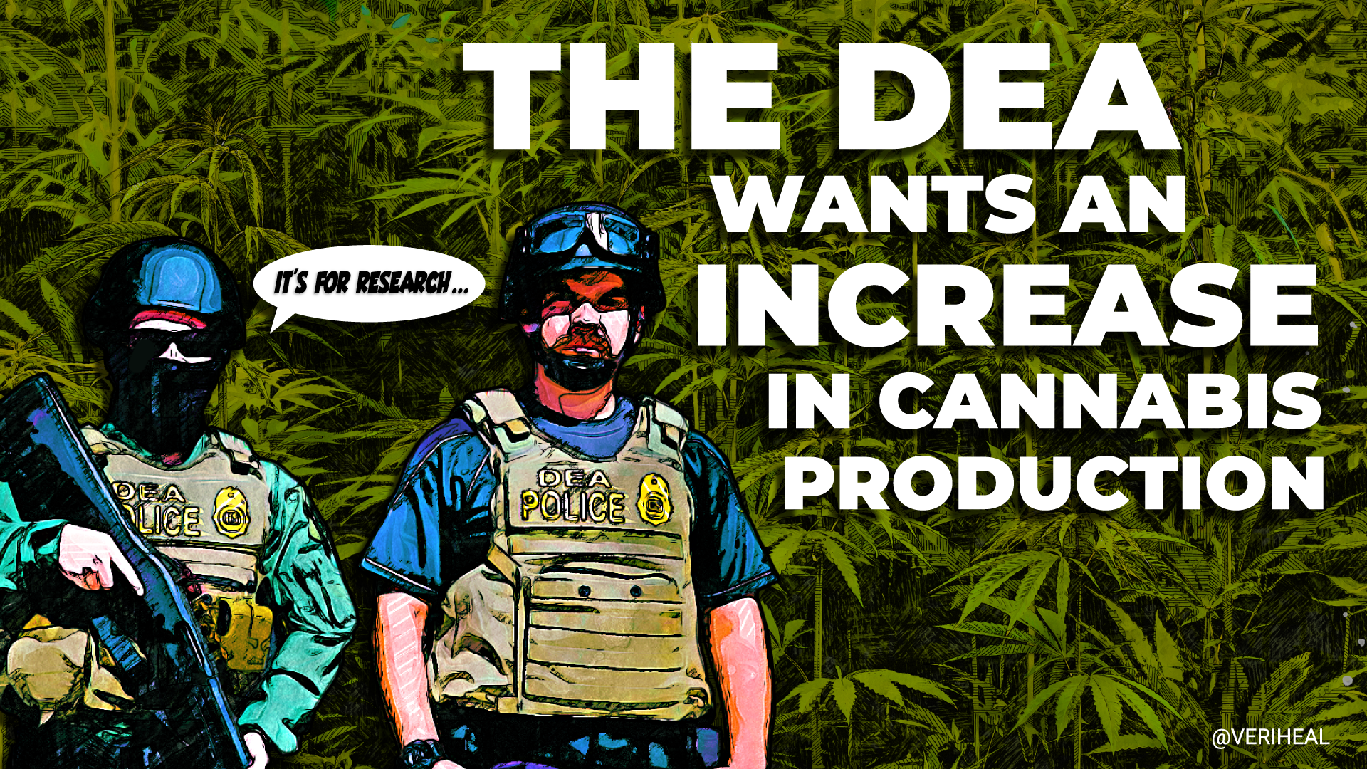 DEA Calls for Increases in Research-Grade Cannabis and Psychedelic Production