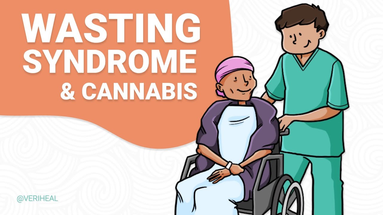 wasting syndrome and cannabis graphic